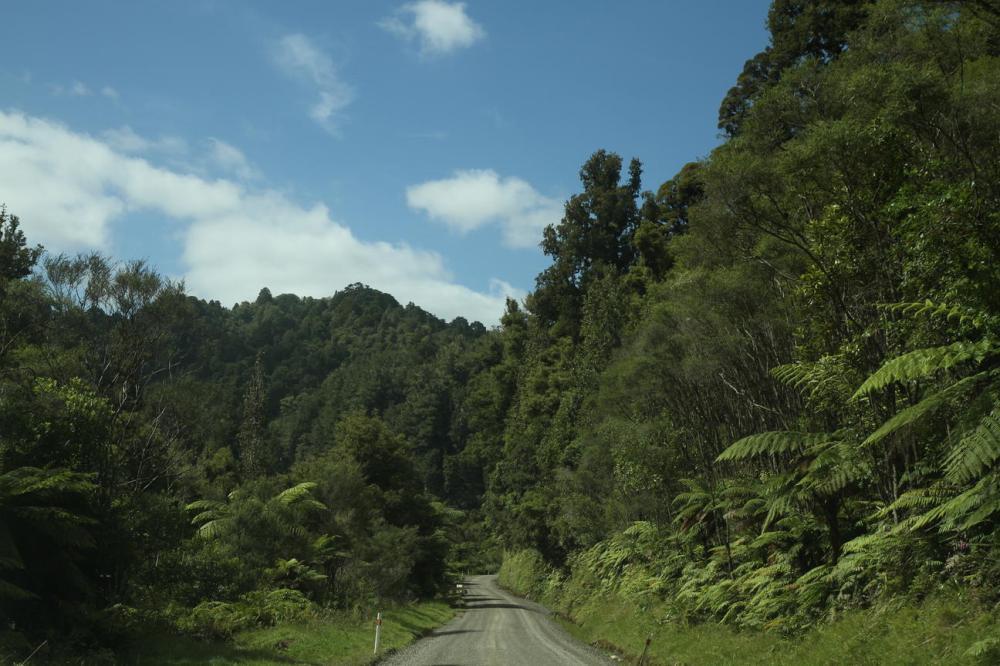 forgotten-world-highway