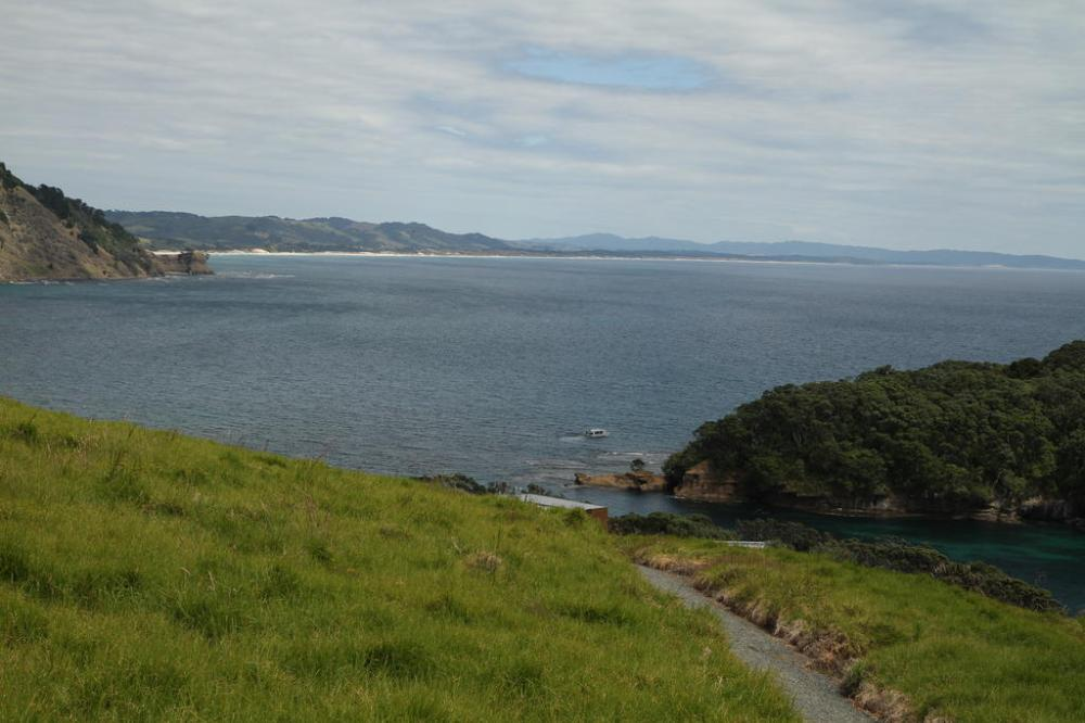 goats-island-marine-reservat