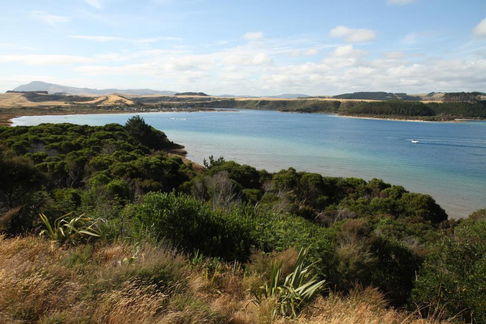 kai-iwi-lake-taroha