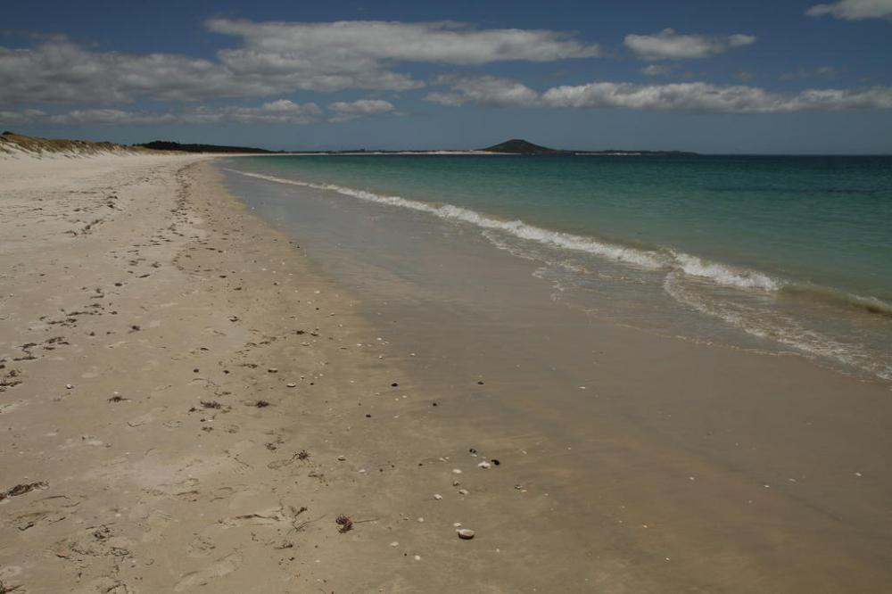 karikari-beach-1