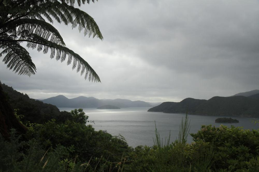 marlborough sounds weg nach picton