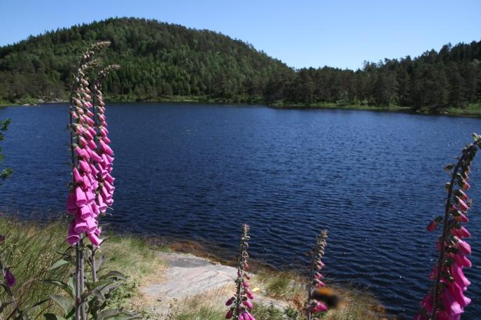 Norwegen 037