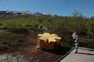 die goldene Krone ist das Symbol der Nationalparks in Schweden